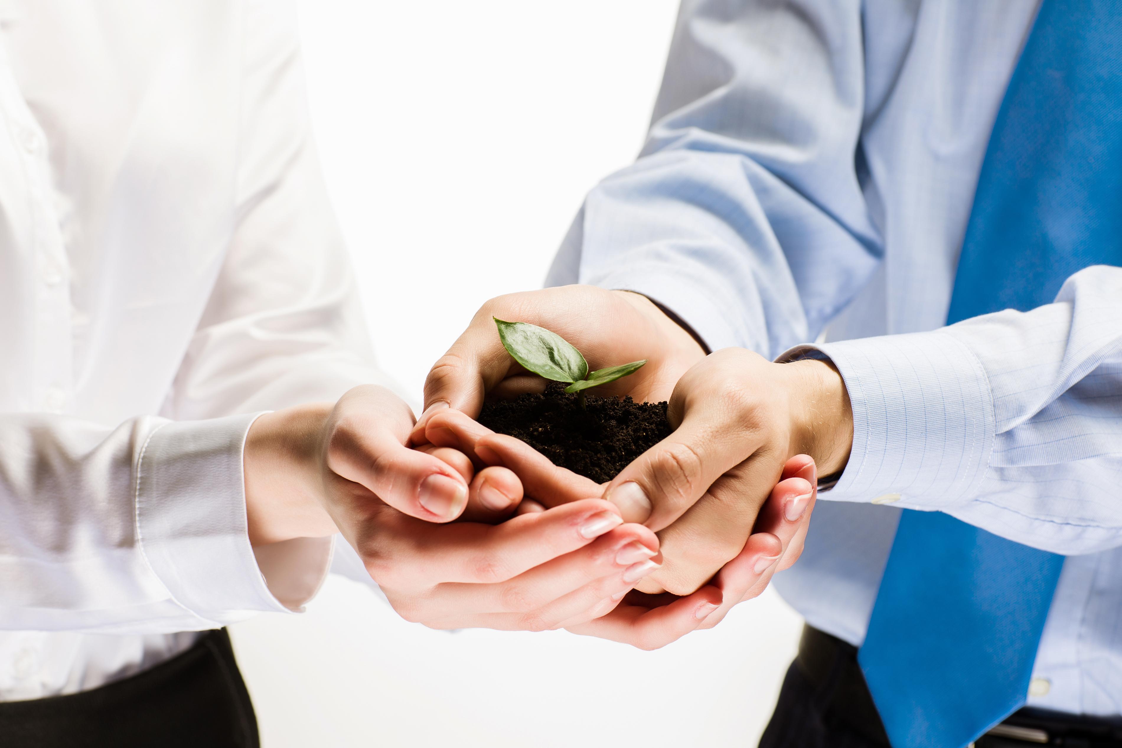 I benefici di assumere un giovane in azienda